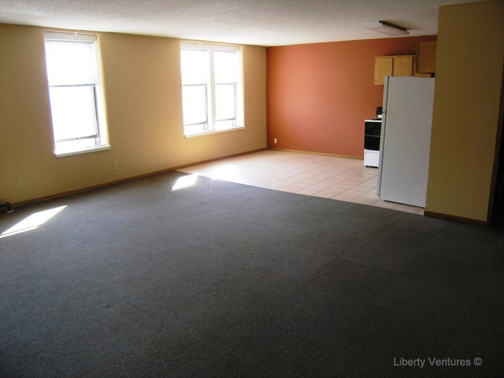 Downtown Mankato apartment for rent